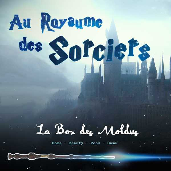 "Box Harry Potter ""au royaume des sorciers"" Deluxe"